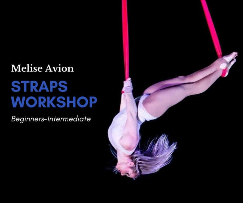 Aerial Straps Workshop Melise Avion