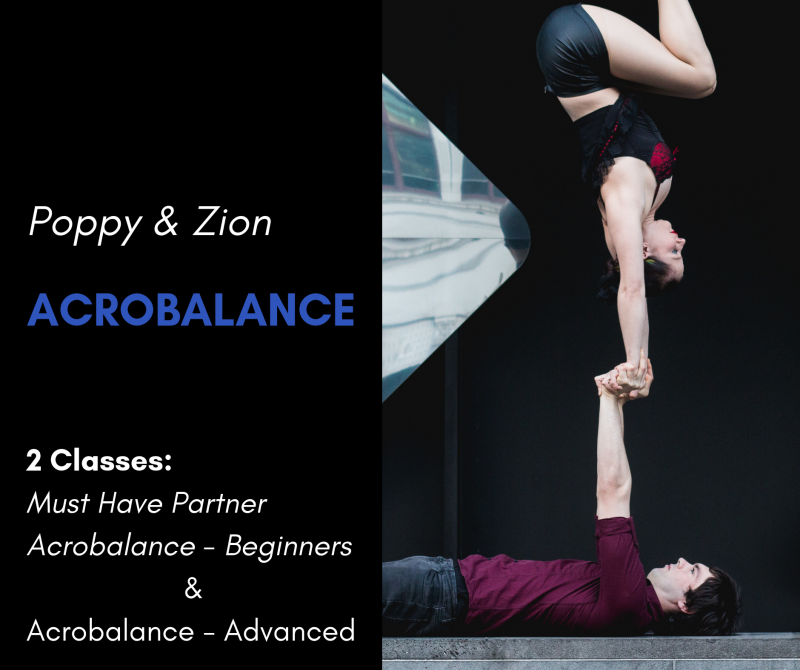 Poppy and Zion acrobalance workshop