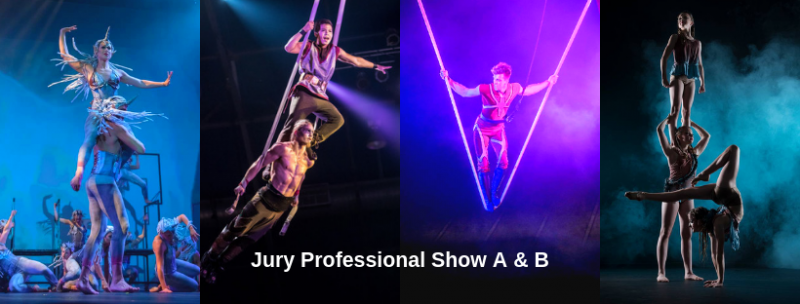 Official Jury Panel for the 4th Australian Circus Festival