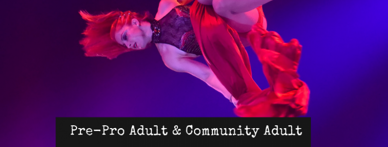 Pre-Professional Adult and Community Adult Circus Shows