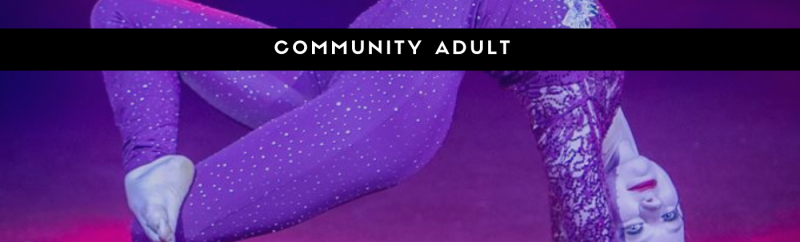 Community Adult Division Contortion