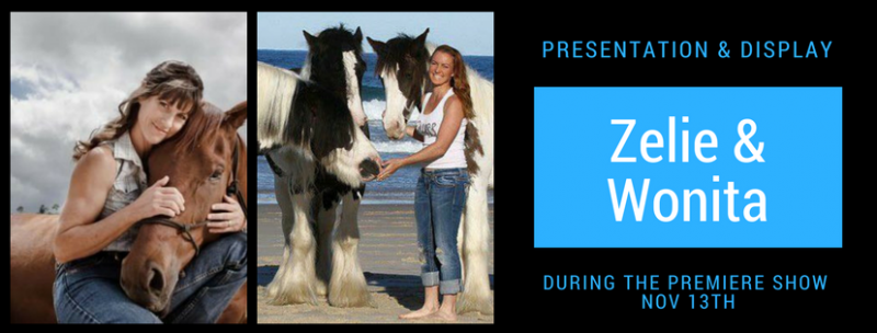 equestrian training display and talk