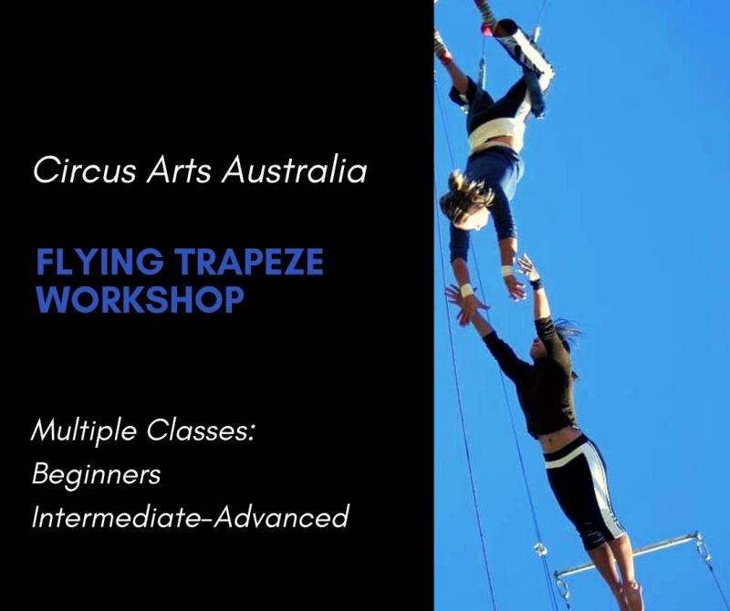 Flying Trapeze Workshops