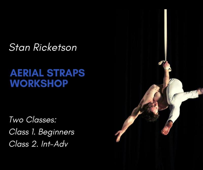 Stan Ricketson Aerial Straps Workshop